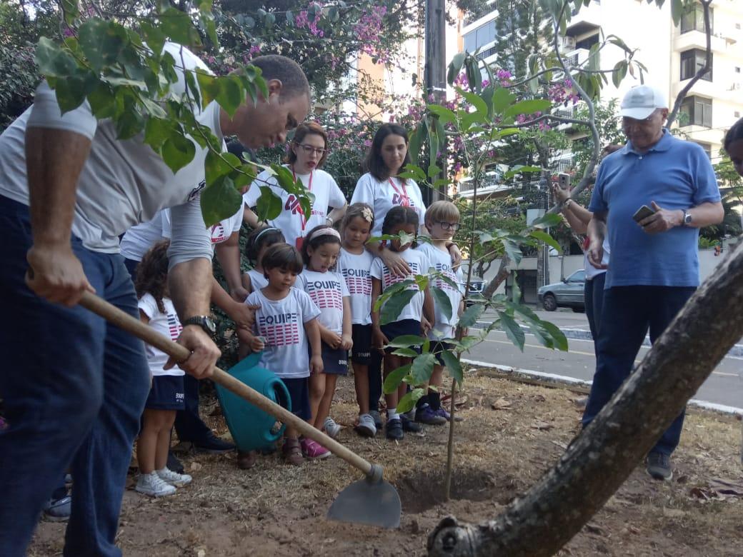 Plantio do Ipê na avenida Beira Rio com os alunos da Ed. Infantil tarde em comemoração aos 40 anos da escola 2019-11-22 (9)